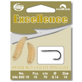 Excellence Maggot